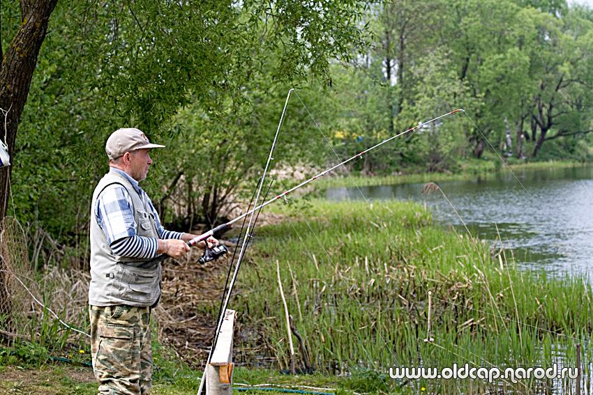 рыбалка на волнушке тверская область